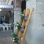 Le Manette sul Verdon #159