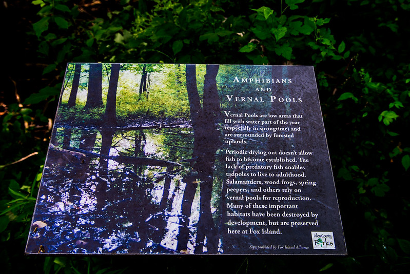 Fox Island Nature Preserve - June 22, 2017