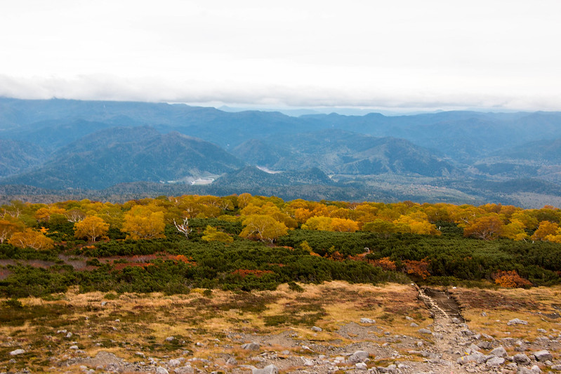 20150918-大雪山黒岳-0783.jpg