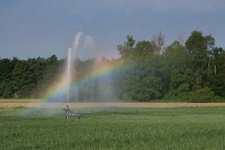 Rainbow-Maker