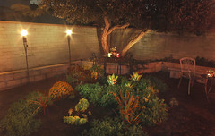 Westchester garden crash - evening view