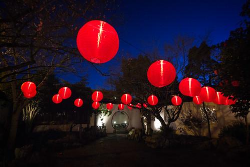 lansu chinese garden portland oregon night dusk lanternviewing redlanterns courtyard