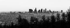 Los Angeles, bw panorama
