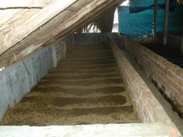 Yêu cầu làm chuồng nuôi trùn quế tại miền Bắc - kimgiatrang.com