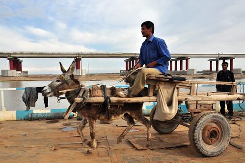oʻzbekiston uzbekistan bridge donkey people uz