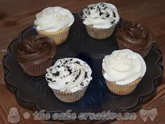 Wedding Cake Tasting Cupcakes