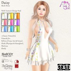 NEW - Daisy