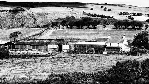 Gellilwca Fawe Farm B/W