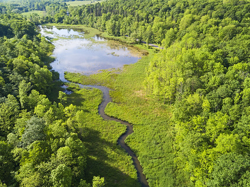 Skaneateles Conservation Area Drone Aerials