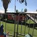 Ryan and Shannon Gutenkunst posted a photo:BMX bikes and physics demo