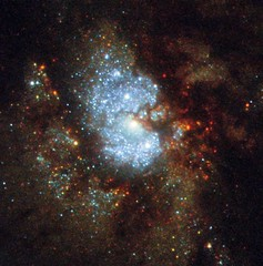 Hubble's Hidden Galaxy