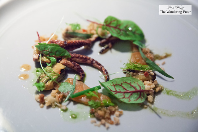 Octopus, trout, chili, hazelnuts