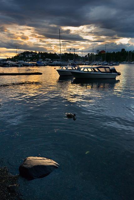 Ulvøya, Oslo, June 2017