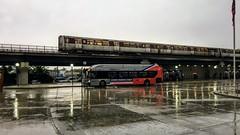 WMATA Metrobus 2016 New Flyer Xcelsior XN40 #2870