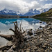 Torres del Paine (Tim Melling)