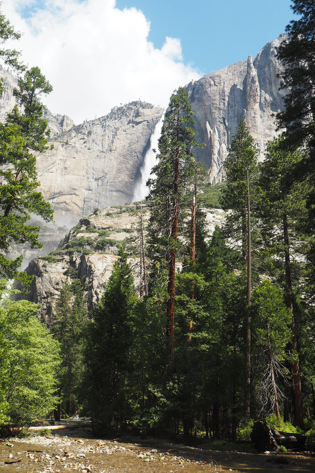 Yosemite National Park 1