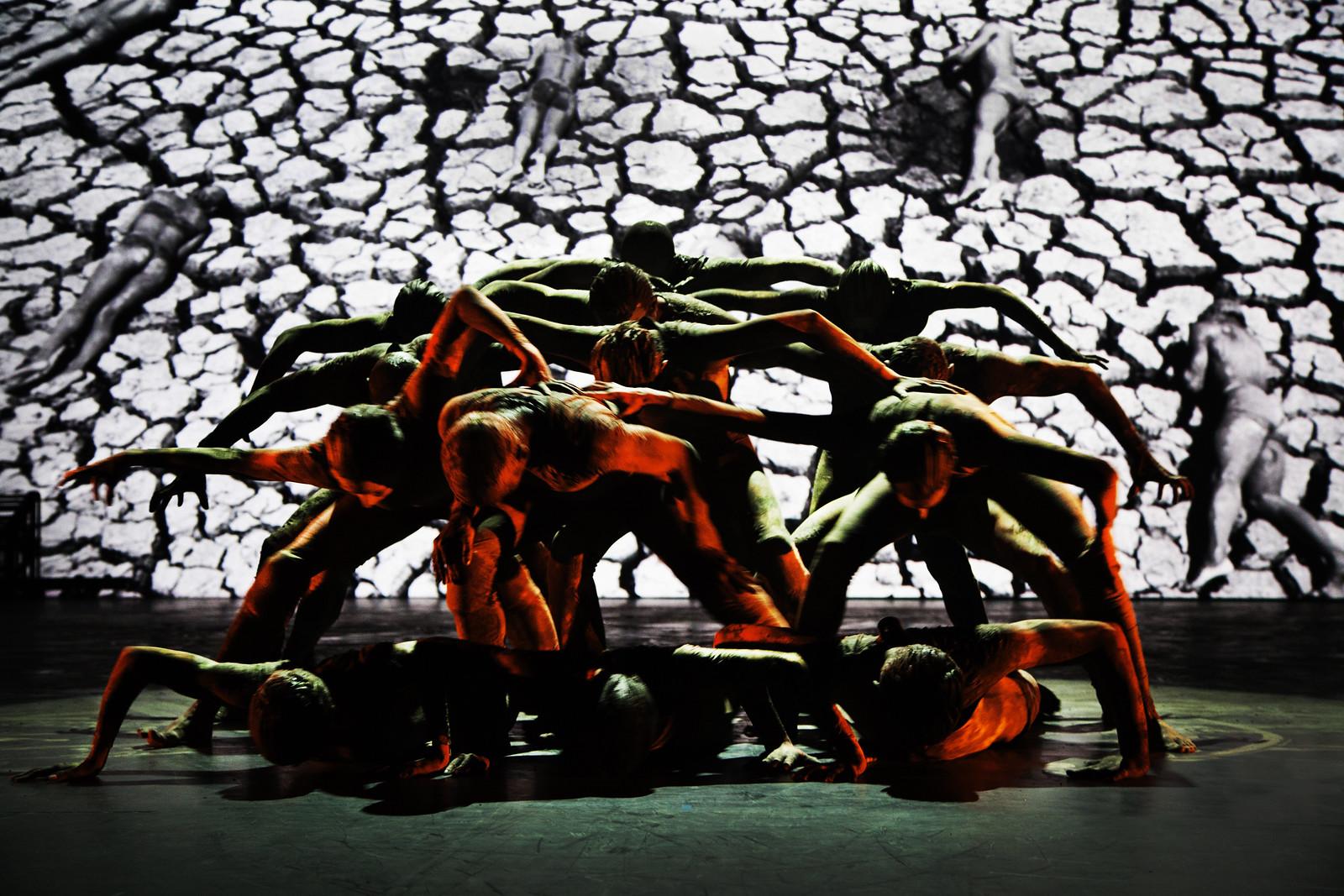 Atração Noite de Abertura 35º Festival de Dança de Joinville. Cão sem plumas, Cia Deborah Colker