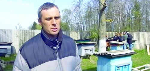 Порошенко рятуватиме рівненських бджіл?