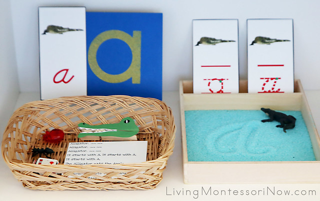 A is for Alligator Basket and Salt Writing Tray
