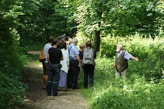Auf den Spuren der Landschaftsgeschichte in Haithabu mit Archäobotaniker Dr. Helmut Kroll - WHH 09-07-2017