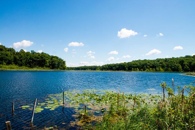 Wing Haven Nature Preserve - June 20, 2017