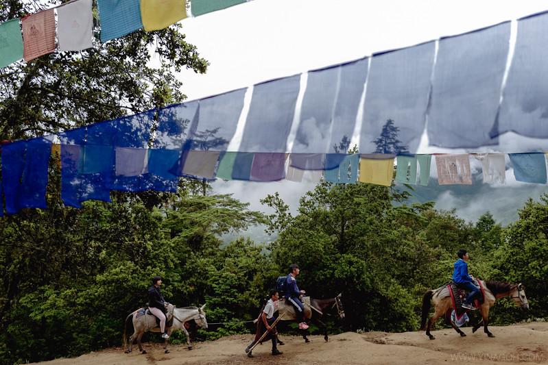 Sketch-Bhutan-Drukasia-Travel-138