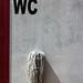 WC [Explored #301] by Cornelli2010