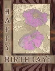 Birthday Card_1000px