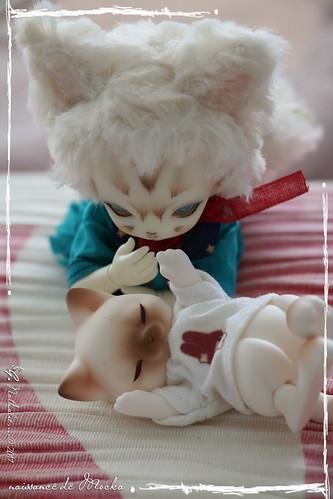 ✰ Ma famille de kitsune (p. 20) - Page 12 35250795060_96970c2089