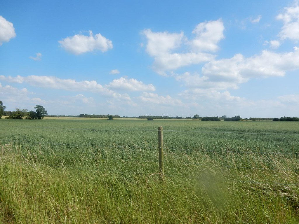 Big field, big sky, post. Sandy to Biggleswade