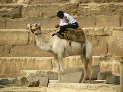 Policeman on Camel