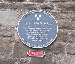 Photo of Newcastle Town Wall and Plummer Tower black plaque