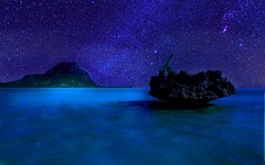 Midnight Island Swim