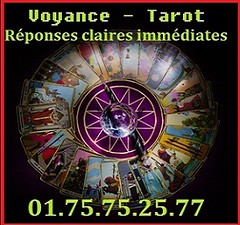 Tarot card reading with crystal ball and wand 2