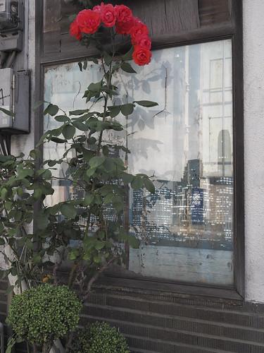 JF C6 03 026 福岡市博多区住吉 OLYMPUS Pen-F × M ZUIKO Digital 17mm F1.8#