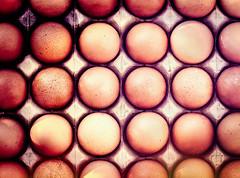 Eggs...