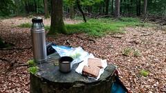 Picnic im Wald #VisitAlsace