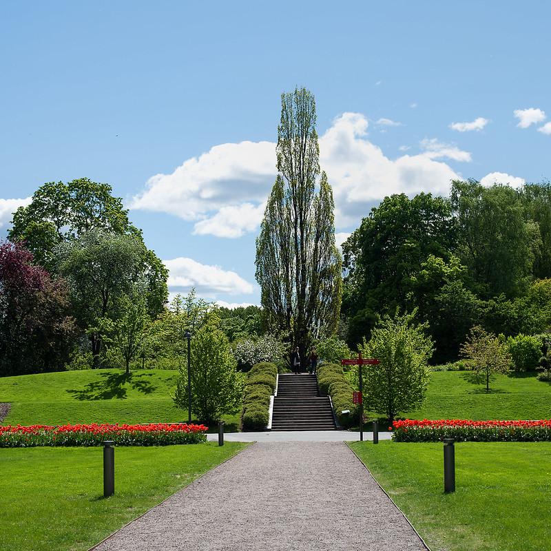 botanisk hage 10