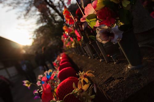 japon japan asia asie stephanexpose canon 600d 1635mm 1635mmf28liiusm temple jizo zojoji tokyo shrine statue soleil sun sunset coucherdesoleil