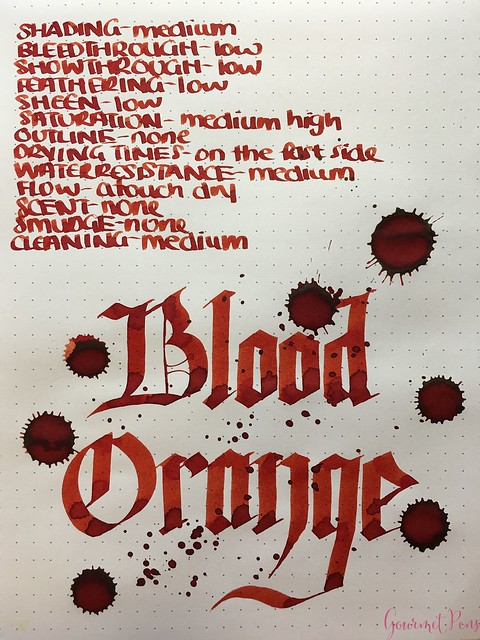 Ink Shot Review Diamine Anniversary Blood Orange @AppelboomLaren 7