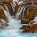 Wonderfoss by Aaron Reed Photography