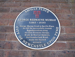 Photo of George Redmayne Murray black plaque