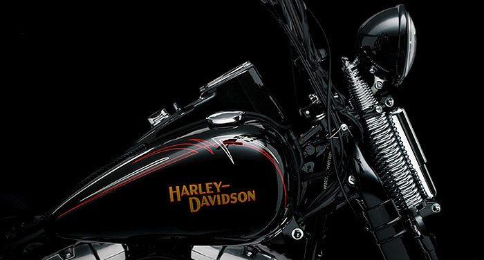 Harley-Davidson FLSTSB 1584 SOFTAIL CROSS BONES 2008 - 5