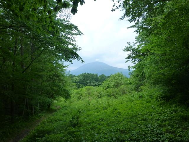 浅間山 ー 軽井沢野鳥の森, Panasonic DMC-TZ30