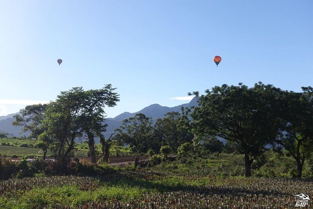 台東鹿野高台熱氣球-13