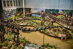 Dinosaurs Exhibit at Carnegie Museum of Natural History - Pittsburgh PA