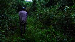 amigoski de la selva
