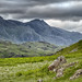Sca Fell. by Tall Guy