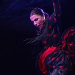 """""""Fin de fiesta"""" restitution des stages maestros avec Taller Flamenco à la Bodega"""