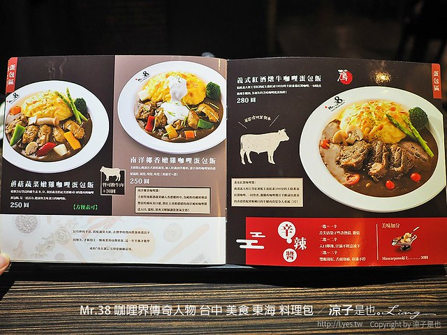 Mr.38 咖哩界傳奇人物 台中 美食 東海 料理包 44